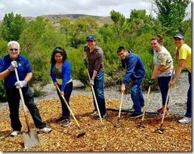 Another year of Rotary service cleaning up Mission Trails.